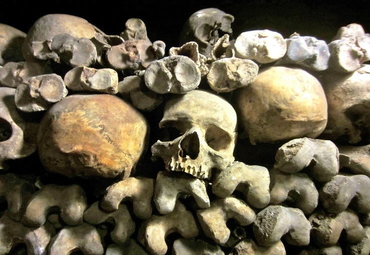 Skulls and bones stacked in Paris Catacombs
