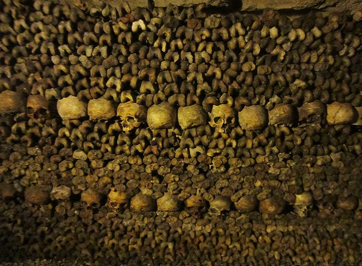 Hundreds of leg bones stacked on top of each other with two rows of skulls separating them