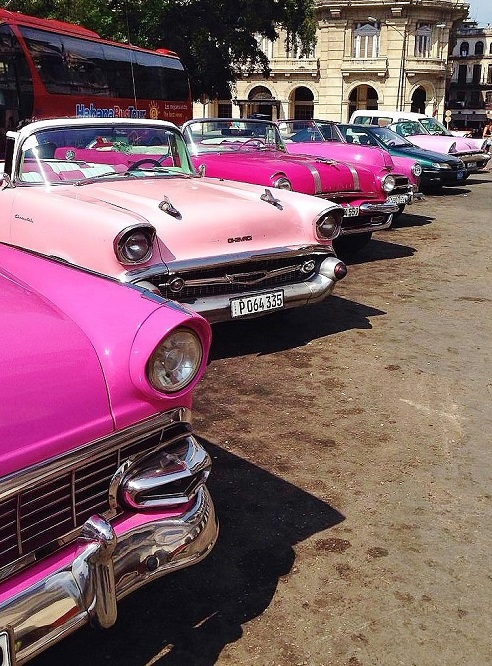 line of pink classic American cars