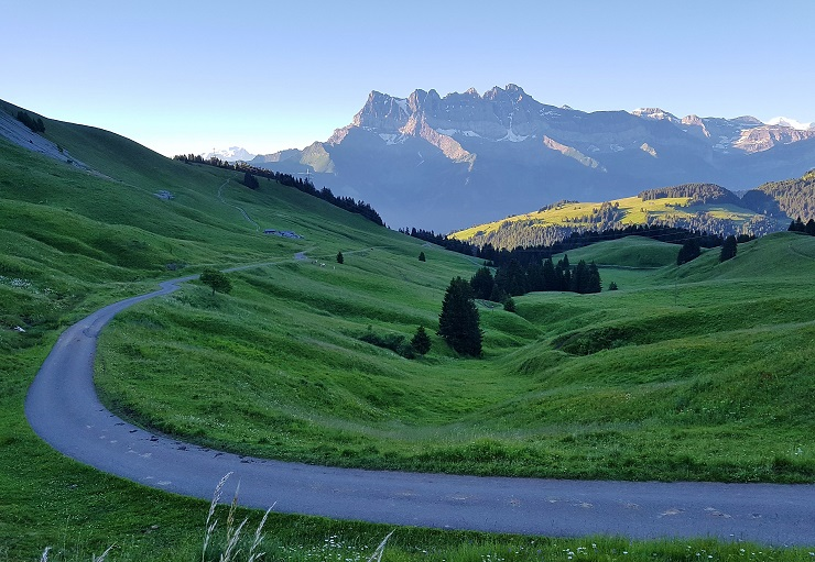 Green pastures in the Swiss Alps