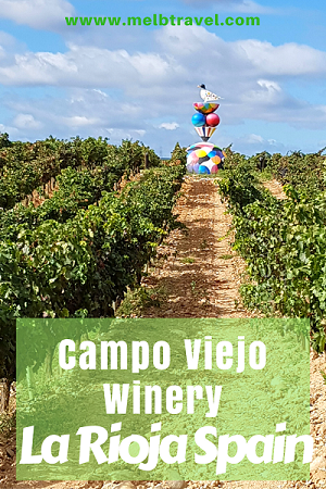 Pinterest, Campo Viejo winery, La Rioja, Spain