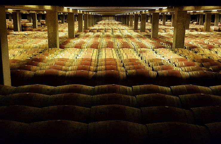 thousands of barrels of wine aging underground