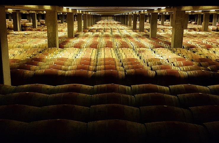 thousands of barrels of wine aging underground