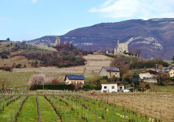 Vineyards surrounding Chambery