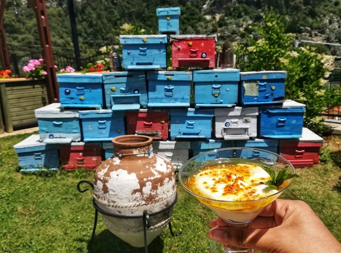Honey yoghurt drink in front of stacked beehives