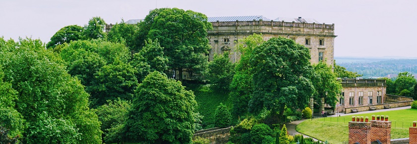 Hilltop palace surrounded by treees