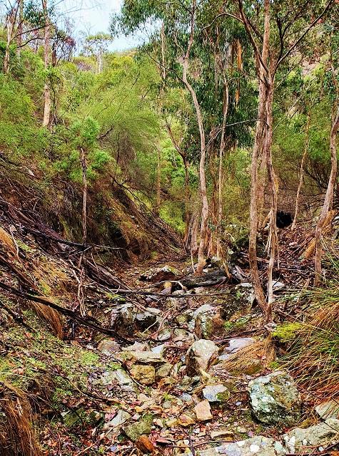 Hiking Australia - Lerderderg state park victoria