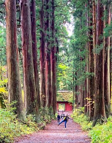 Togakushi Shrine Nagano Japan
