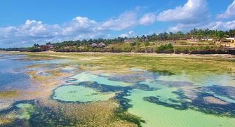 Tanzania Travel Destination Melbtravel Page