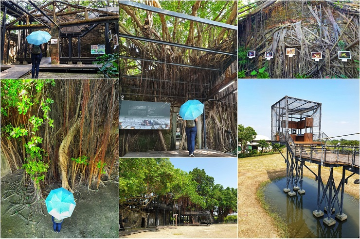 Historical landmark Anping Tree House Tainan Taiwan