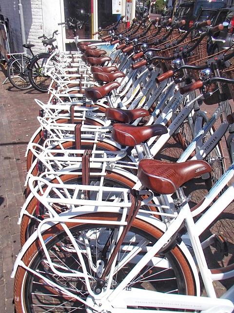 Cycling in Zandvoort Amsterdam beachs